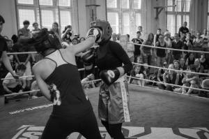 sparringstreffen2015-0519