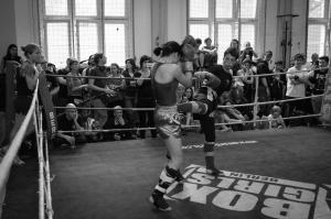 sparringstreffen2015-0581